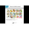 Planche de présentation - Titinours et la fête des couleurs